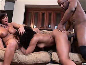 Lisa Ann and Misty Stone slobber over this hard cock